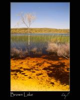 Brown Lake by 2Stupid2Duck