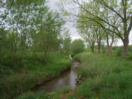 Along the Rode Beek 5 by BMFMhero1991