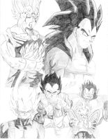 My Vegeta Collage by TwichAIR23