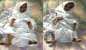 Bundled babies by emmil