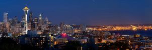 Seattle at Night by JaanusJ
