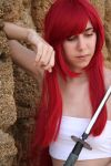 Erza Scarlet Cosplay by N3K0T3NShi1