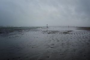 West Wittering by Dogbytes