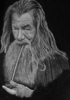 Gandalf the Grey. by Juzike