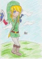 Link Gender Bender by Nori-es