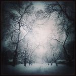Early Winter Blues by intao