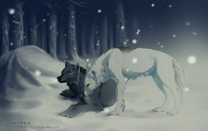 Waiting out the Storm by Naviira