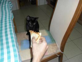 Pizza??? by riscas