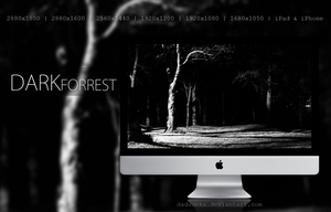 The Dark Forrest - Wallpaper by Daduunka