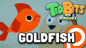 TidBits 112 - Goldfish by andrewk