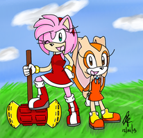 Have No Fear, Team Amy Rose is Here! by KateSempai46