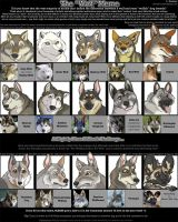 The 'wolf' meme by zonkey