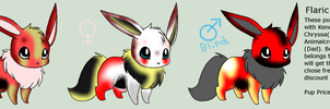 Flaric x Chryssa - Eevee pups adopt - CLOSED by ACs-adoptables