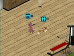 Sims 1 - Dragon and Spike playing tag by Kiddo-the-dragon