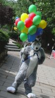 Damon Husky And Balloons by LycanDID