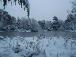 Roehampton London - Snowy Day by Oligarch23