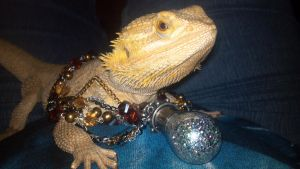 Toothless wearing my Rumpelstiltskin Necklace. by CalicoWoolfe