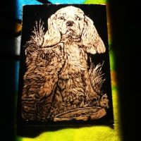 Engraving Art Puppy and Kitten Copper by socks-15