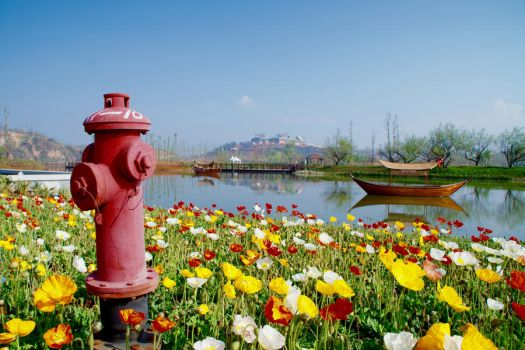Fire Hydrant by rm5