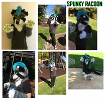 SPUNKY FURSUIT by SpunkyRacoon