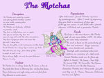 The Motchas [Semiopen Species -points and PAYPAL-] by axiabetty