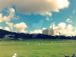Cricket Under The Clouds by SnowflakeValley
