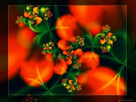 Orange blossom by gitte