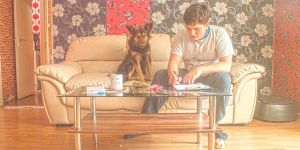 Designing with dog by wrebble