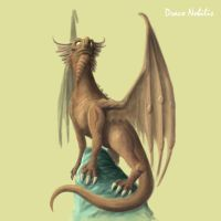 Dragon concept by articraft