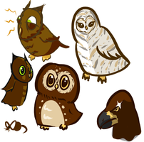OWLS by SimplyKaren