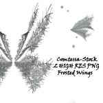 Wings Frosted Fairy 1 by Comtessa-Stock