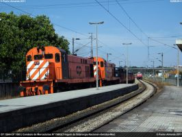 Epic Awesome Train 100811 by Comboio-Bolt