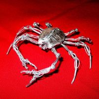CRAB in wire by TheWallProducciones