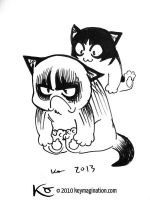 Grumpy Cat 07 2013 by Keymagination