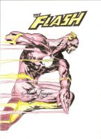 The Flash Wooden Pencil Drawing by TrouperDNico
