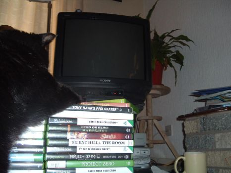 Cats Don't like Video Games by Ranma17