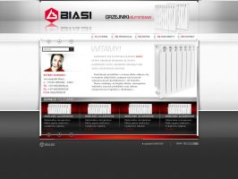 Biasi's website layout by xaay