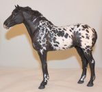 Sophie Feral Horse resin black appaloosa by arcadian7