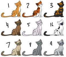 Kitty Adopts by SBS: CLOSED by StoryBookRosesAdopts