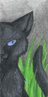 Crowfeather Bookmark by CaptainMorwen