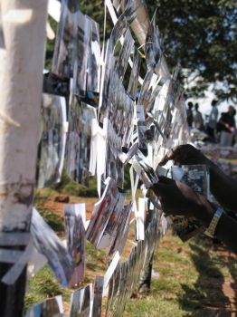 Activist photo wall, WSF by ViPe-C