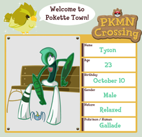 PKMN Crossing: Tyson by LostPuzzle