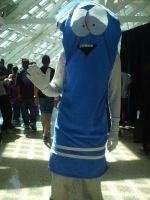 AX'11: Towelie by theEmperorofShadows