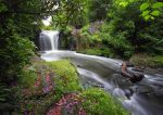 Jesmond Dene Waterfall by scotto
