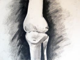 Charcoal Anatomy 04 by guardian-of-moon