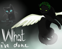 What ive done by Zabersud