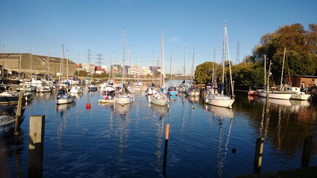 Photos from Eling by Bocodle