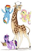 'And look! There's even a giraffa camelopardalis!' by Lionel23