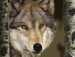 wolf in the wood by flame1111