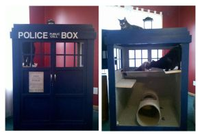 Kitty TARDIS by zombiecatfire13